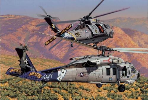 MH-60S HSC-21 Blackjacks + HSC-23 Carson 774616 500774616