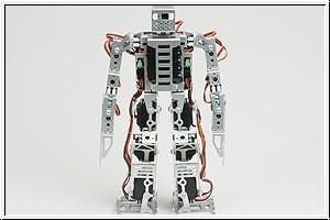 WP Roboter PIRKUS-R Graupner 5204