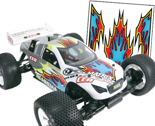 Scallop Flames Graphik LRP XR007