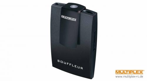Souffleur Multiplex 45185
