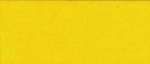 RO-COLOR SPRUEH. SIGNALGELB/GL Robbe 1-55400001 55400001