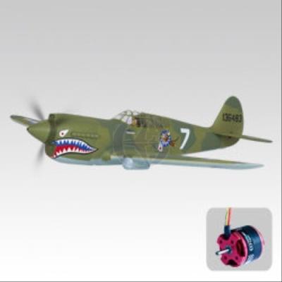 P-40 War Hawk OBL Thunder Tiger 4339-K21