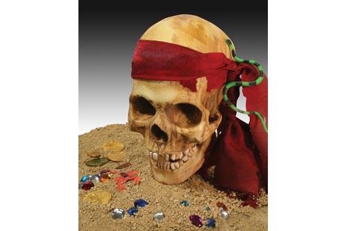 Pirates Skull Krick li71302