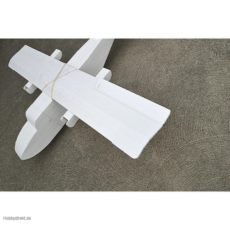 FT Guinea Pig WR Graupner FT4102 Flite Test