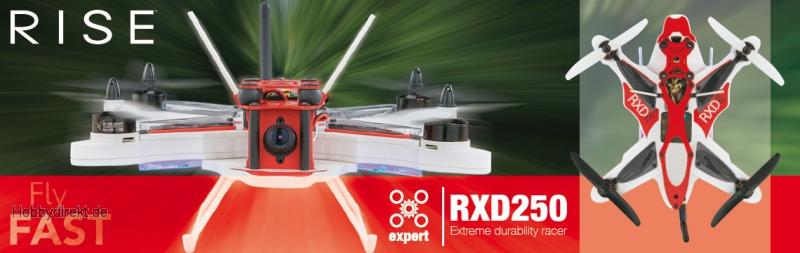 RISE RXD250 Quad Racer Rx-R RISE0250