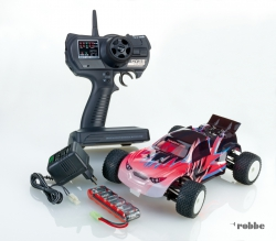 Mini Rave 1/18 RTR rot Robbe 2044R
