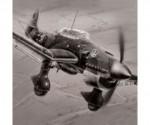1:72 Junkers JU-87 B-2 Stuka Carson 787306 500787306