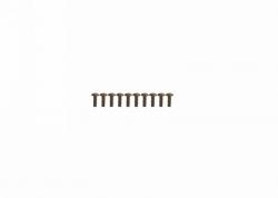 Blechschraube Innensechsk. 3x8 (10) Graupner H33308T