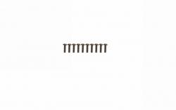 Blechschraube Innensechskant 3x10 (10) Graupner H33310T
