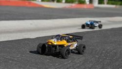 ECX Roost 1/24 4WD Desert Buggy RTR, orange/grau Horizon ECX00015T2