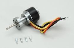 Brushless Motor - Salto STM