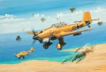 Micro Wings Junkers Ju87B Stu Revell 04918