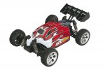 BX4.18 4WD 1:18 RC Buggy RTR DIDC0043