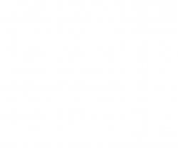 LP-2 Weiss glänzend 10ml (VE6) Tamiya 82102 300082102