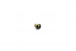 MAGURA Befestigungsschraubensatz (Stahl) für zwei Bremsscheiben, T25 M5x10 (VE = 12 Stück) Magura 87010702